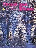 Выпуск № 6 (68), 1980